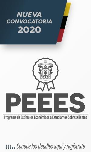 PEEES_CorreoMasivo600x1000-100.jpg